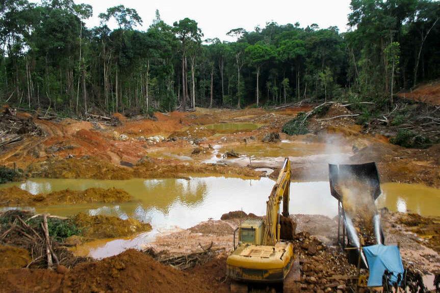 Guyane Société Montagne D'or