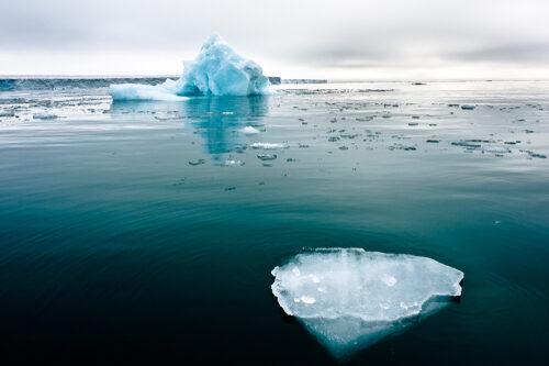 Le Parlement Déclare L'urgence Climatique