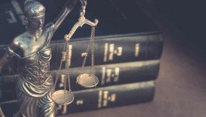 Covid19 Et Constitution: Les Apports Complémentaires De La Décision Du 11 Mai