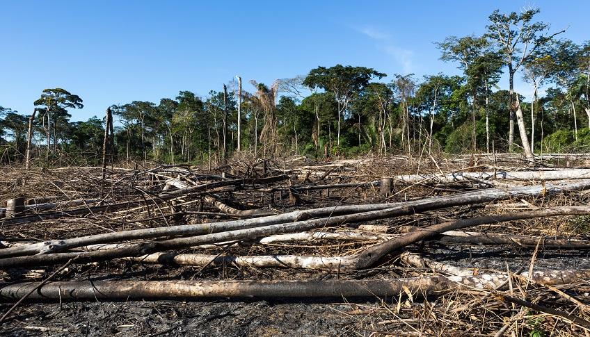 Convention Climat écocide